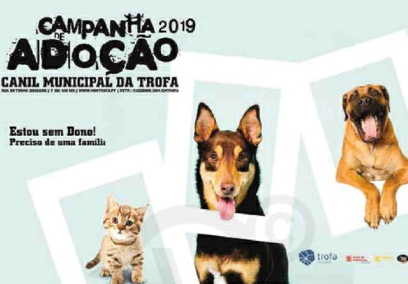 Sorgal Pet Food apoia Campanha de Adoção